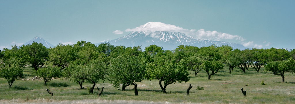 Art On Scarf - Armenia. Ararat